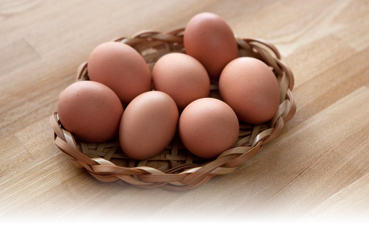 こだわり家族のこだわり卵とは?